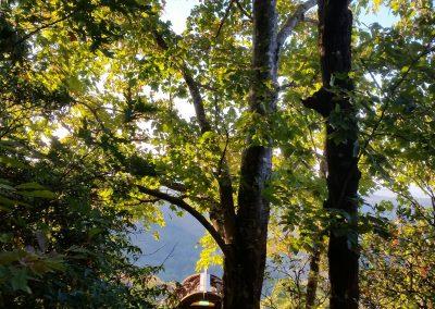 Arbor peace and quiet.