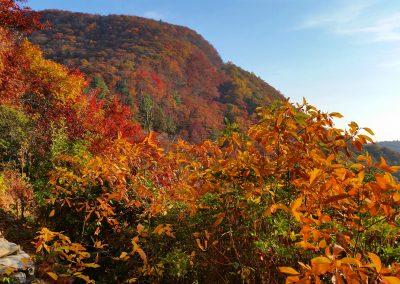Toxaway Mountain summit in fall.